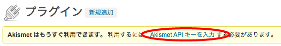 akismet-key2