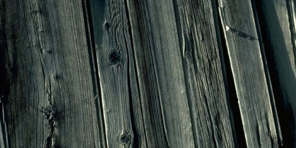 wood-texture3