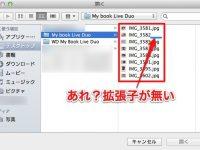 【Mac】あれ?保存したファイルに拡張子がないぞ?という時の対処方法!