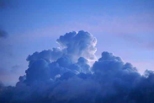「auバックアップ」「au Cloud」アプリが登場!iPhoneじゃないけど…