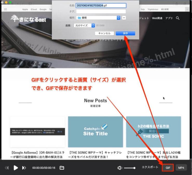 EaseUS RecExperts for Mac GIF